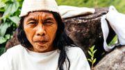 """Jacinto Gil Daza est un sage de la communauté des Wiwas. C'est la première fois que ces Indiens collaborent avec le """"petit frère"""" (leur manière d'appeler le reste du monde)."""