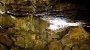 Les Grottes de Hotton, un patrimoine exceptionnel à (re) découvrir
