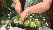 De la ficelle et des pommes pour débuter un montage floral