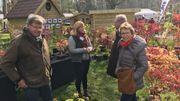 Face au froid, jardiniers et pépiniéristes redoublent de prudence à la foire d'Enghien
