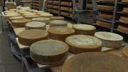 Media 21: C'est prouvé (par des Suisses): la musique influence le goût du fromage!