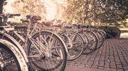 Le vélo, une fois de plus, roi à Mouscron dimanche