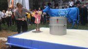Symboliquement, les manifestants ont versé quelques litres de lait au pied d'une vache aux couleurs de l'Union européenne. Un petit enfant s'est joint au mouvement en versant lui aussi son biberon de lait.