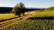 La Grande évasion vous emmène dans les endroits incontournables à visiter en Bourgogne du Sud