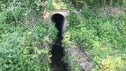 Les eaux polluées ont été rejetées dans les cours d'eaux voisins du zoning des Tuileries