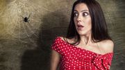 Arachnophobie : vous avez peur des araignées ? Nous avons la solution !