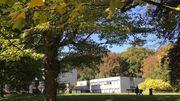Le Musée de Mariemont multiplie les plateformes pour diffuser ses collections