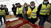 FoodTech : une ferme géante d'insectes édifiée en Picardie