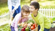 Un carré potager, c'est cultiver le plaisir d'une alimentation saine à portée de main !