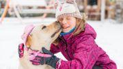 Comment prendre soin de nos animaux de compagnie durant l'hiver?