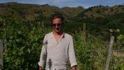 Italie: Filip Kesteloot, Producteur de vin et d'huile d'olive en Sicile