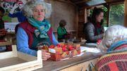 Le succès est au rendez-vous, à tel point que la baraque à fraises d'Ittre est régulièrement en rupture de stock.