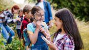 La Ville de Dinant recrute pas moins de 21 étudiants pour cet été