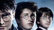 """""""Harry Potter"""": avant le film, un livre!"""