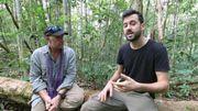 Un reportage sur la déforestation à Bornéo numéro 1 des tendances YouTube