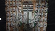 Des installations électriques sophistiquées pour les plantations
