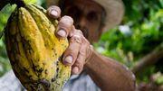 Le commerce équitable: une goutte d'eau dans l'océan du commerce mondial