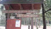 La nature par delà la frontière dans les Ardennes françaises