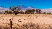 Vue imprenable sur le volcan Licancabur, à la frontière avec la Bolivie