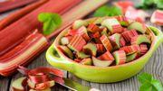 Recette du vin de rhubarbe