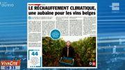 Le réchauffement climatique, une aubaine pour les vins belges !