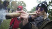 Canada: l'engouement pour le cannabis légalisé persiste, premières pénuries