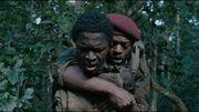 """Festival international du film de Toronto - """"The Mercy of the Jungle"""", avec Marc Zinga à l'affiche, présenté en première mondiale"""
