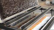 Démantèlement d'un réseau de cigarettes de contrebande: du jamais vu pour les douanes belges