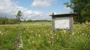 Ce samedi, rejoignez-nous à Arlon pour le premier Printemps Grandeur Nature !