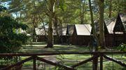 Année 2018 record dans les campings français, tirés par la montée en gamme