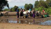 Une des actions en Tanzanie, pour faciliter l'accès à l'eau