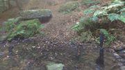 Des petits amoncellements de pierres en équilibre précaire ont été construit à proximité de la table druidique.