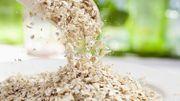 Comment végétaliser nos assiettes et booster sainement notre capital santé ?