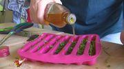 Les trucs et astuces d'Isa : comment conserver ses plantes aromatiques