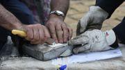 Énorme saisie de 16 tonnes de cocaïne sur un bateau à Philadelphie