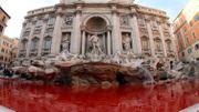 Rome et ses touristes retrouvent enfin la Fontaine de Trevi