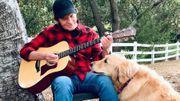 John Fogerty chante pour vous depuis son jardin