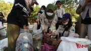 Les Indonésiens en masse sur les plages pour ramasser des déchets