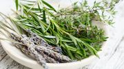 Les supers pouvoirs des herbes aromatiques