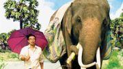 """""""Pop Aye"""", road-movie introspectif à dos d'éléphant"""