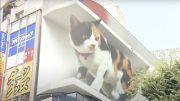 A Tokyo, un chat géant en 3D affole les passants!