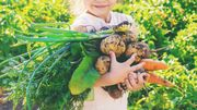 Alimen'T: l'asbl garante d'une alimentation saine pour tous!
