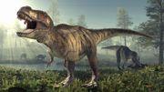 L'astéroïde responsable de l'extinction des dinosaures a frappé la Terre au pire endroit possible
