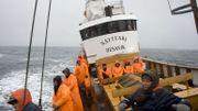 Les baleines, nouvelles stars de l'écotourisme en Islande, loin du harponnage