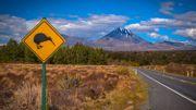 Nouvelle-Zélande: l'autorisation de voyage sera obligatoire à partir du 1er octobre prochain