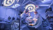 La technique s'améliore pour greffer des organes infectés par l'hépatite C