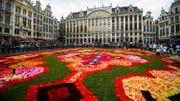 Le tapis de fleurs de Bruxelles élu événement floral international de l'année