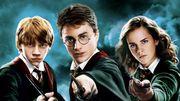 Harry Potter, Dumbledore ou Dobby... Lequel préférez-vous ?