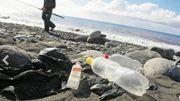 Et si on participait à une opération mondiale de ramassage de déchets!