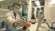 L'institut de Recherche et d'Expertise Scientifique de Strasbourg va analyser les cheveux